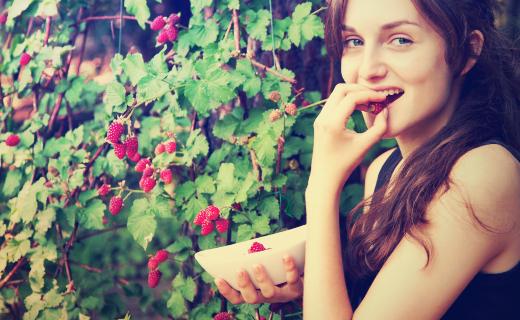 dca-blog_article-05_food-drink-personal-habits